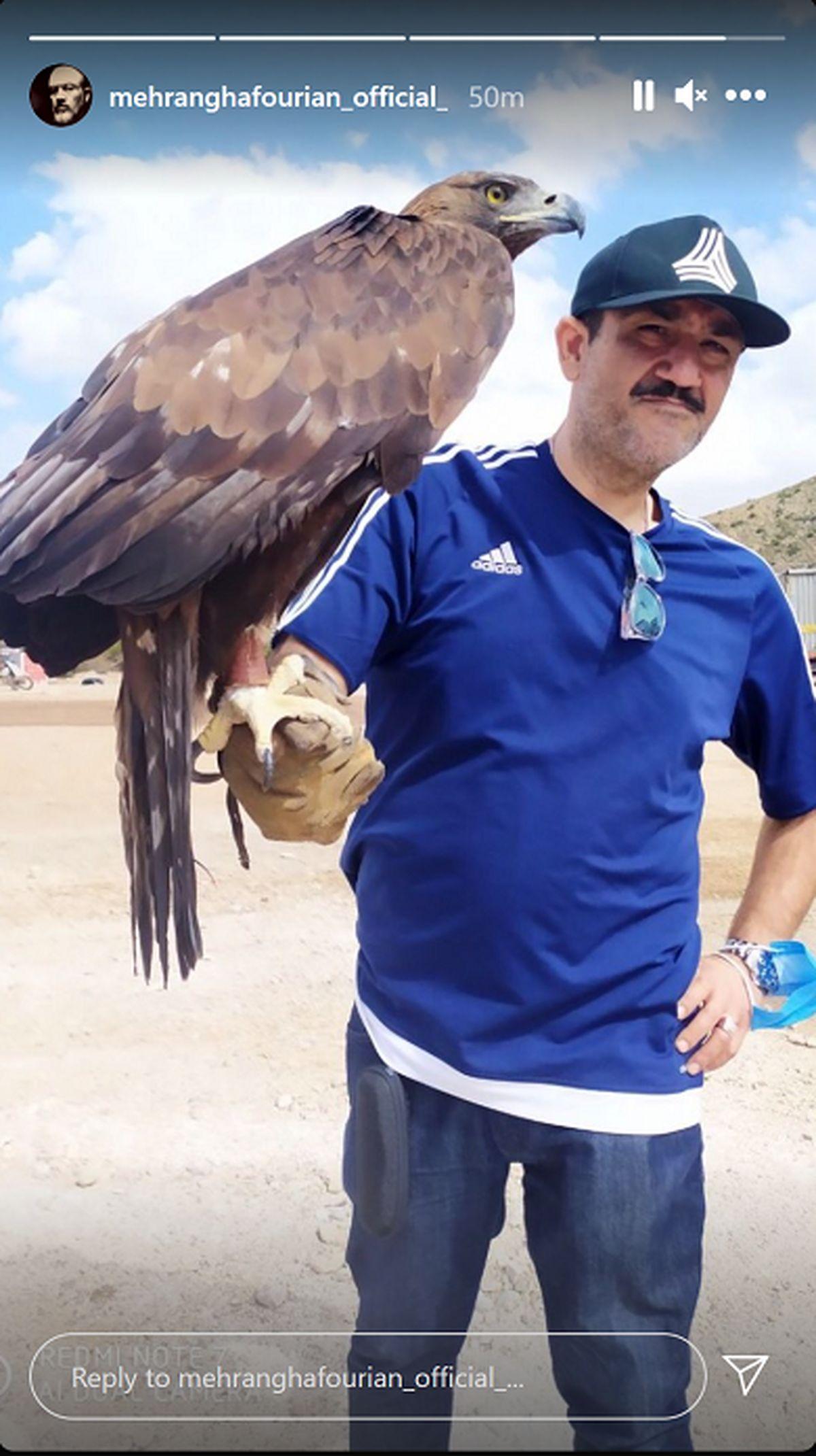 عکس عجیب و غریب مهران غفوریان با عقاب غول پیکر !