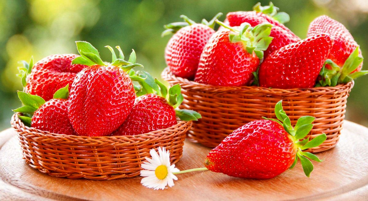 ۵ خوراکی مفید برای حل معضل فراموشی